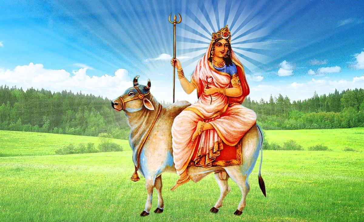 Navratri Celebrations SIM