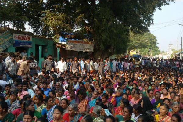 Justice For Jallikattu Protest
