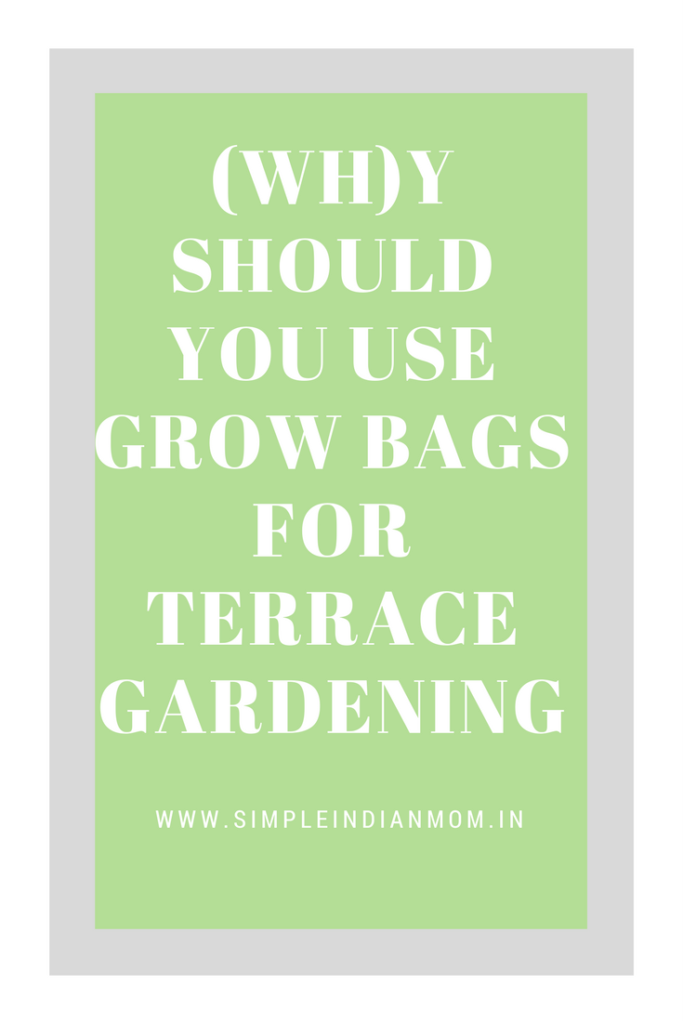 Grow Bags for Terrace Gardening