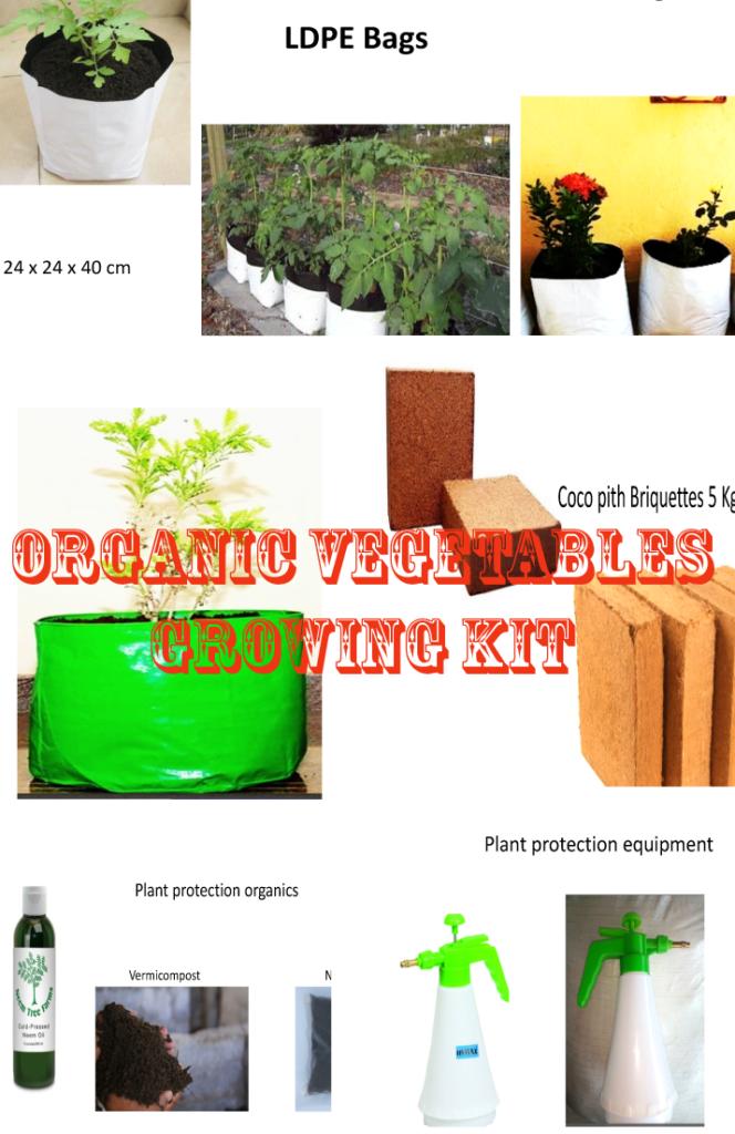 Organic Vegetable Growing Kit