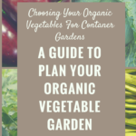 Choosing Your Organic Vegetables For Container Gardens – The Wise Way To Do It Right