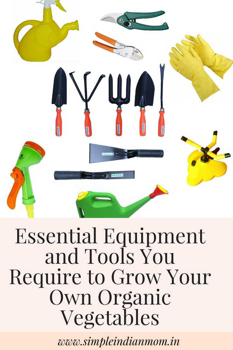 Essential Equipment and Tools You Require to Grow Your Own Organic Vegetables