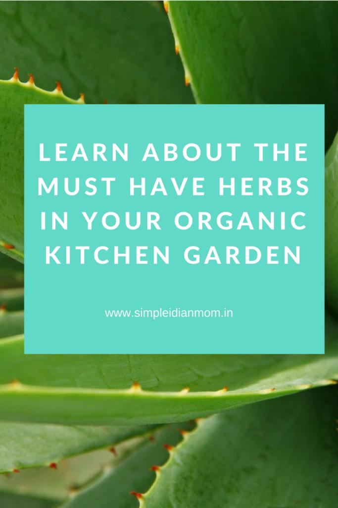 Organic Kitchen Gardening Herbs