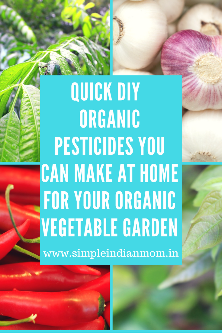 Quick Diy Organic Pesticides You Can Make At Home For Your Organic Vegetable Garden Simple