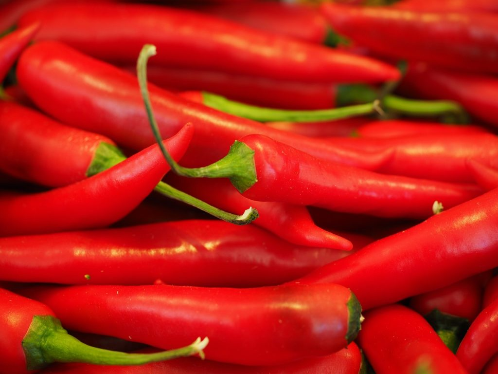 Chili to make organic pesticide