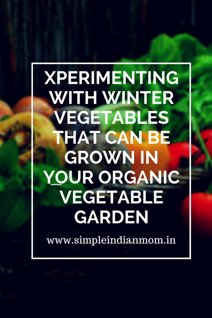 Xperimenting With Winter Vegetables That Can Be Grown