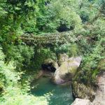 cherrapunjee rain forests