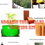 Organic Vegetable Grow Kit