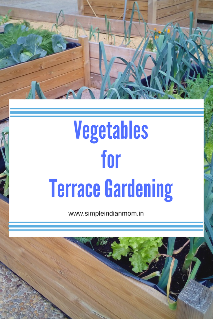 Vegetables for Terrace Gardening