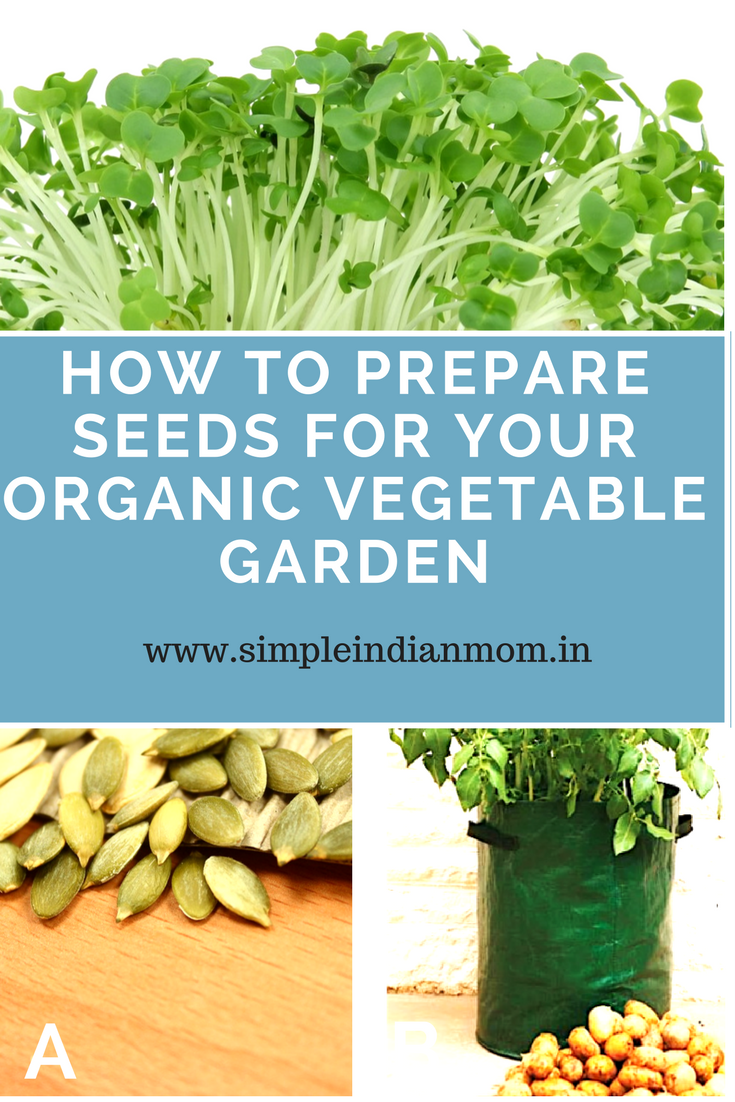 Seeds for organic vegetables