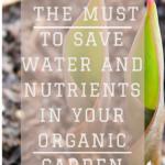 Mulching - To save Water