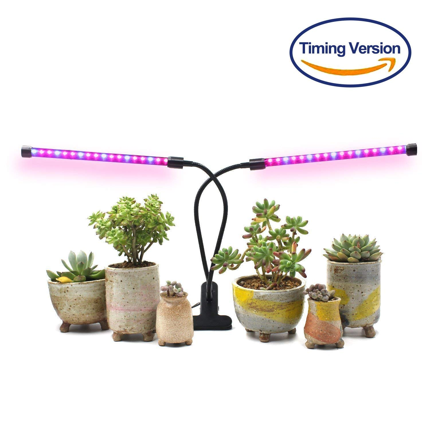 Light for Indoor Plants