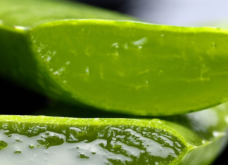 Benefits Of Aloe Vera, how to care for plant and Side Effects