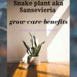 How to grow snake plant at home with less light